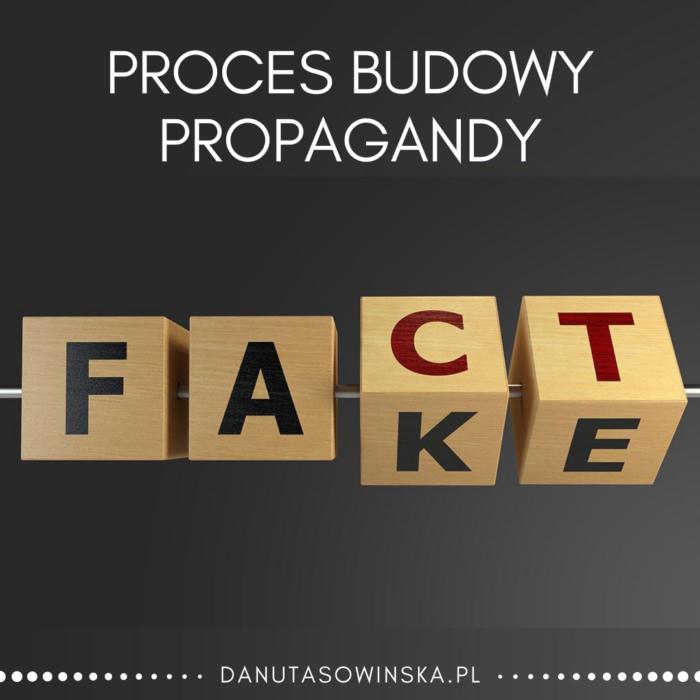 Proces budowy propagandy blog Danuta Sowińska
